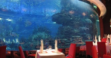 Underwater restaurants - Enjoy your meal with perfect view!