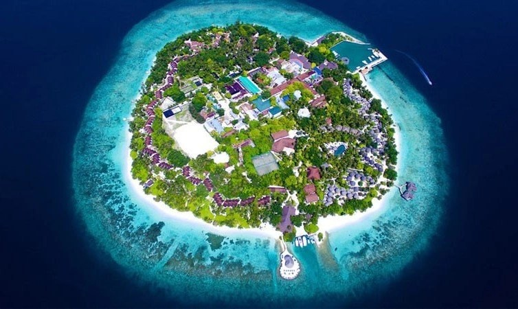 Best Snorkeling Maldives Resorts In 2017 Explore The