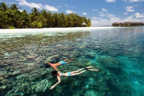 best-snorkeling-maldives-vilamendhoo-island-housereef