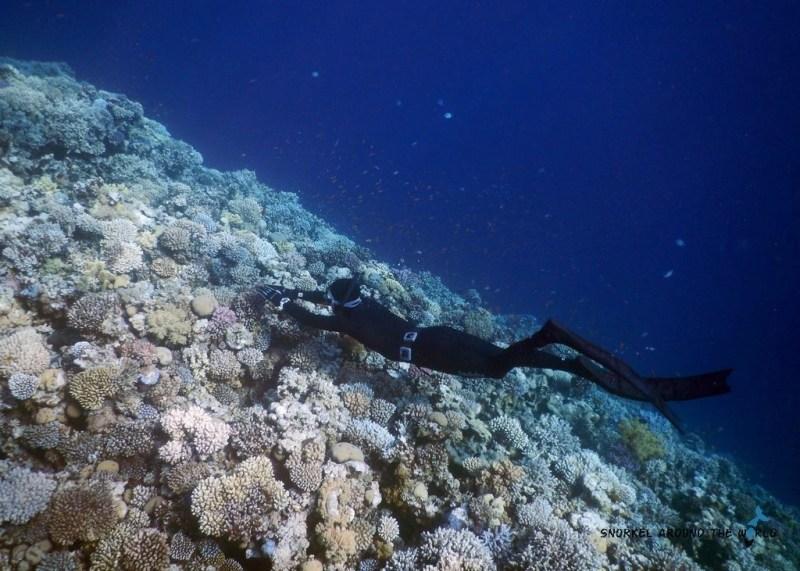 Blue Hole Freediving