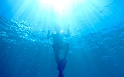 Snorkelling with the Sun