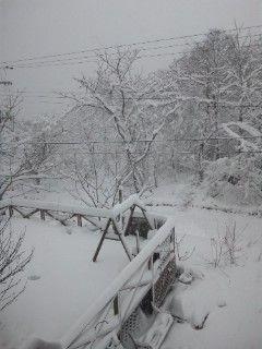 裏磐梯積雪情報_101225
