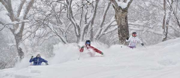 Myoko Snowsports can look after you chasing pow or starting out © Myoko Snow Sports