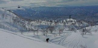 Powder skiing Asahidake