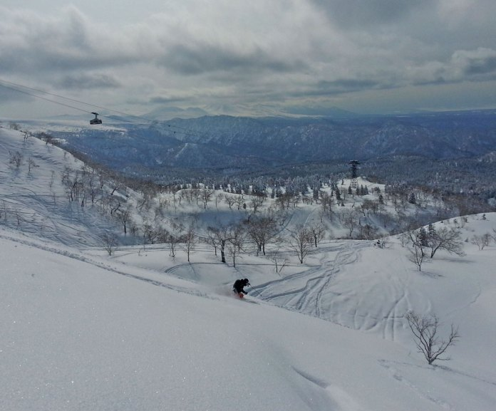 Powder skiing Asahidake
