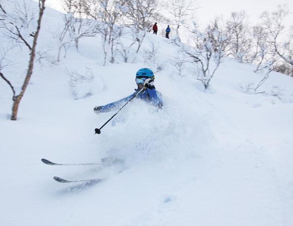 Chisenupuri cat skiing caters to average abilities