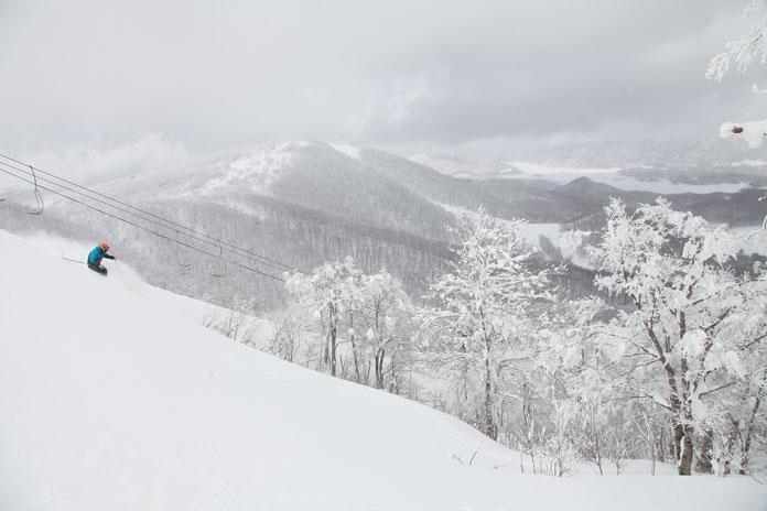 powder skiing Nekoma