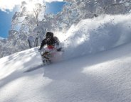 powder skiing Kiroro