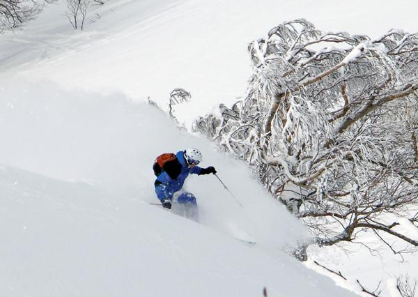 Powder skiing at Zao Onsen