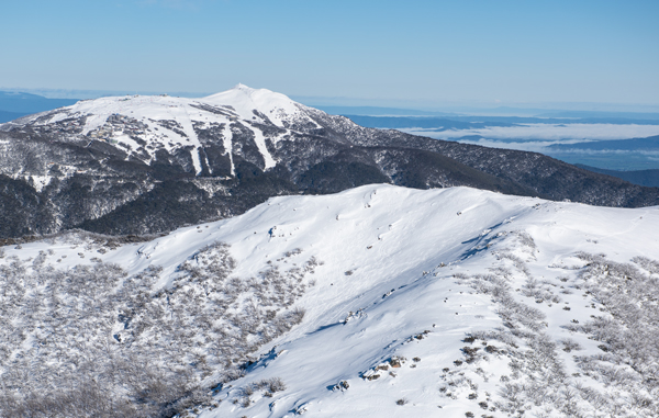 Aerial view from Mt Stirling to Buller