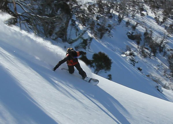 Riding Jones Solution split border in Aussie powder