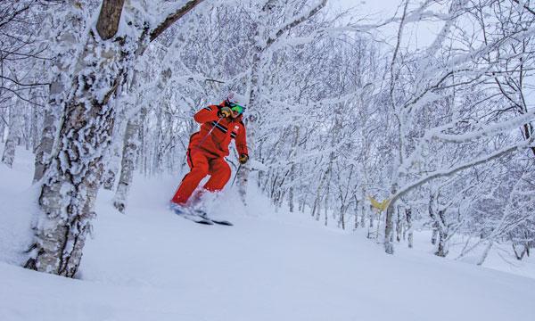 Sahoro Resort tree skiing