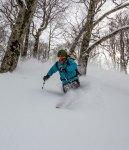 tree skiing Tenjindeira