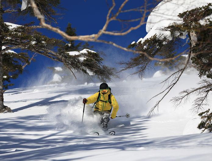 Tree skiing at Naeba Kagura