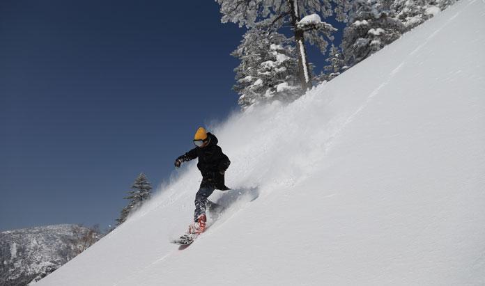 Snowboarding powder at Manza Onsen Gunma Prefecture