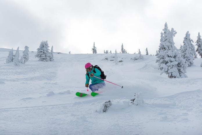 ski powder Arizona Snow Bowl