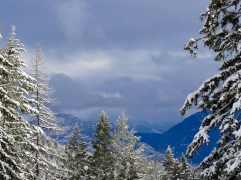 The mountains toward Glacier
