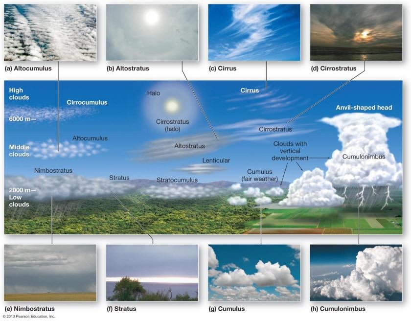 Cumulonimbus clouds produce thunderstorms