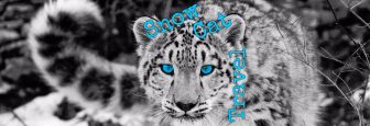 Snow Cat Cover FB