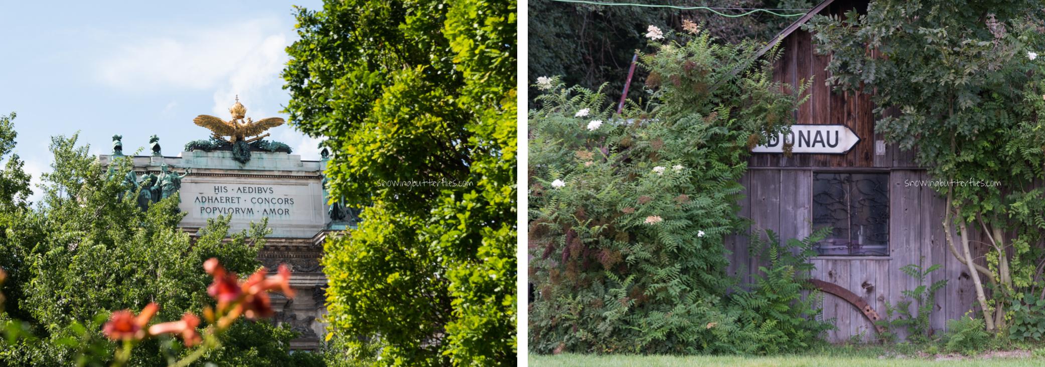 mariana perrone, austria, snowing butterflies, still life, landscape, seasons, donau