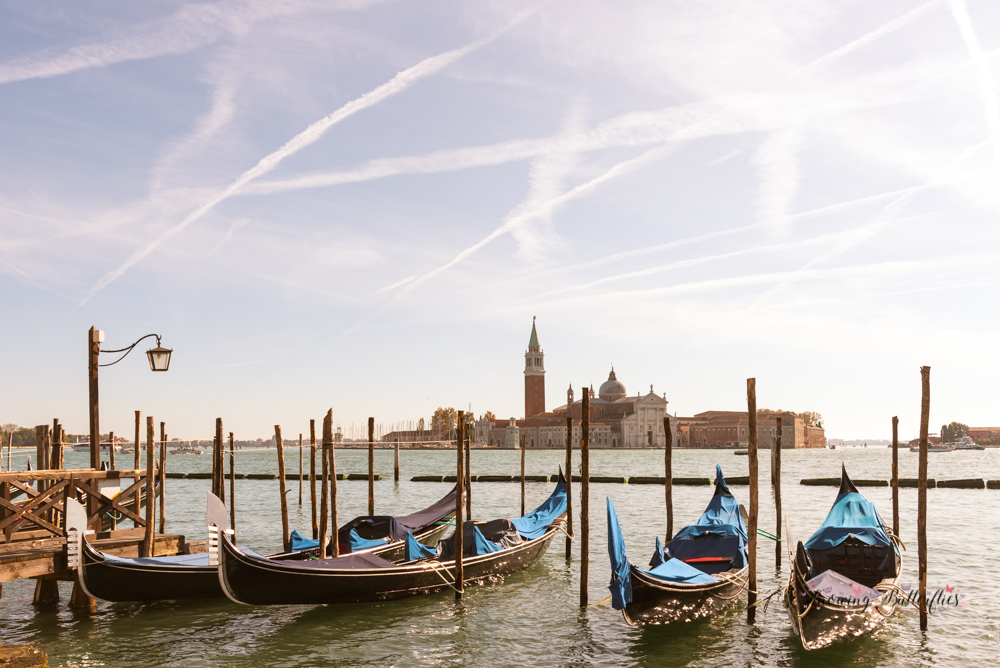 snowing butterflies, mariana perrone, italy, venice, travel photography, europe, city