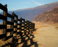country-fence-copy-230×185