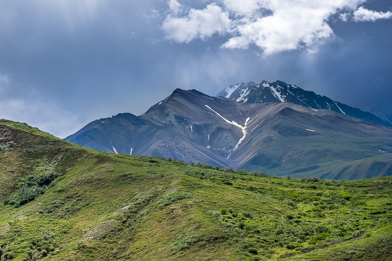 Denali National Park Photos + Tips for a Fun Visit!