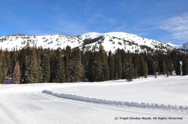 Well-groomed Nordic ski trails go alongside the snowshoe trails