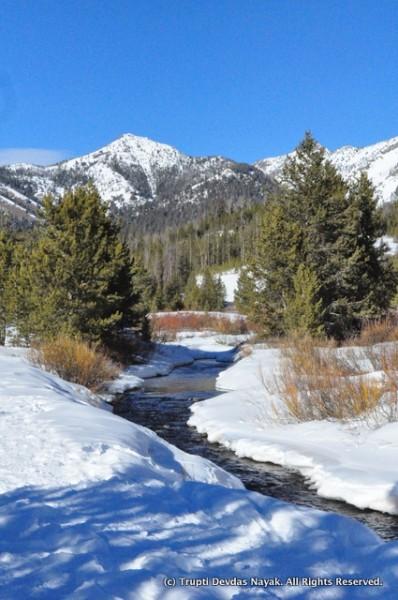 Bubbling brook alongside the snowshoe trail