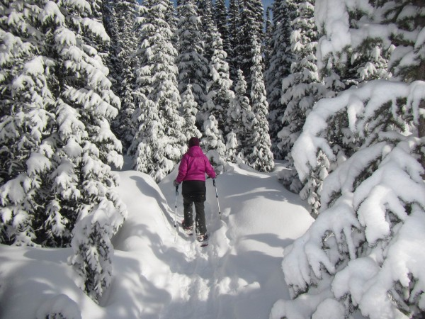 Snowshoeing into Chester Lake