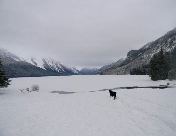 Chilkoot Lake and Jake