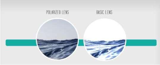 Polaryzacja Ocean