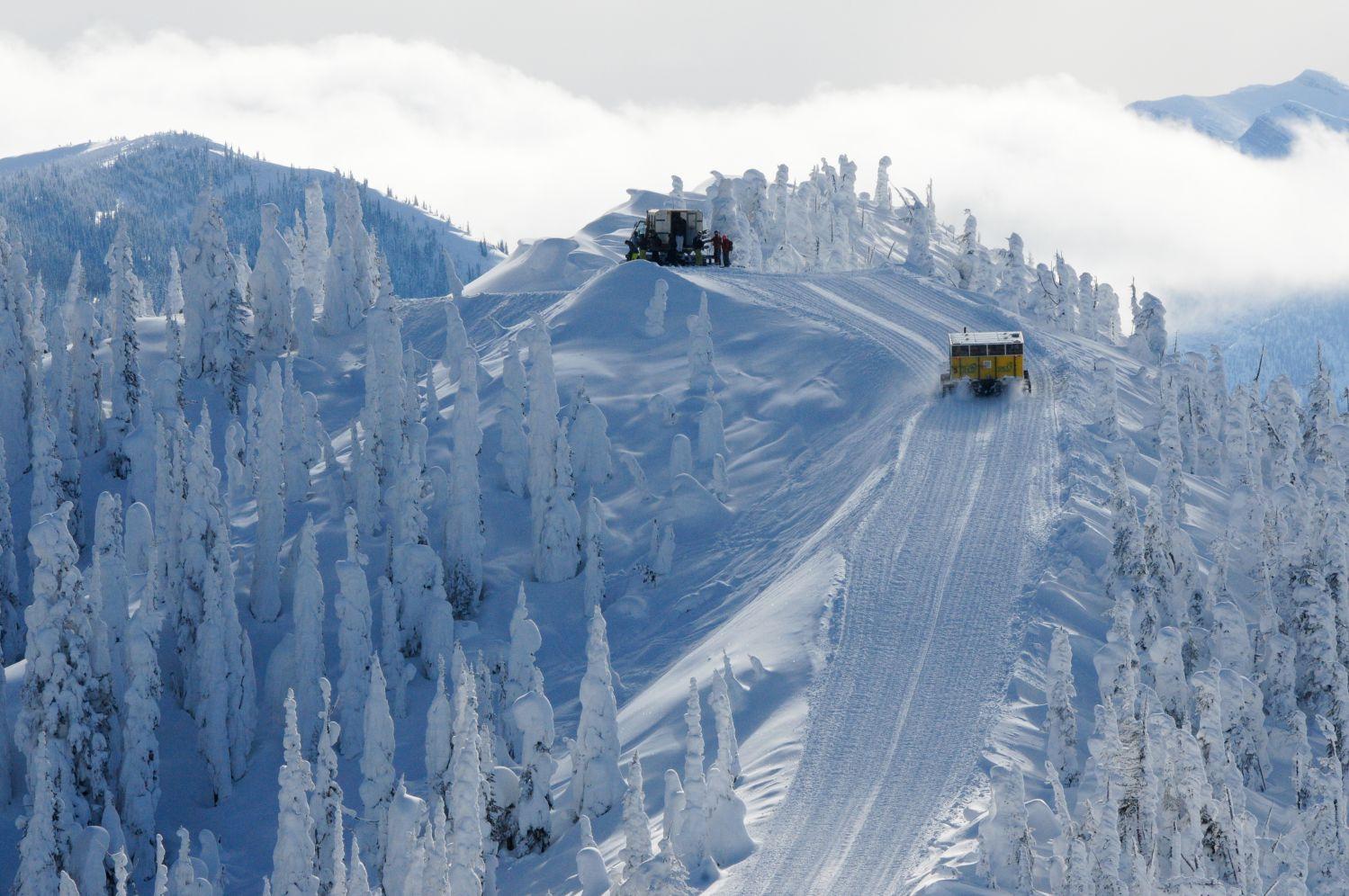 Snowcat Skiing
