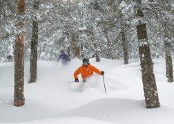 Tailor-made Ski Holidays