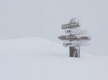 Mamooth Ski Holidays