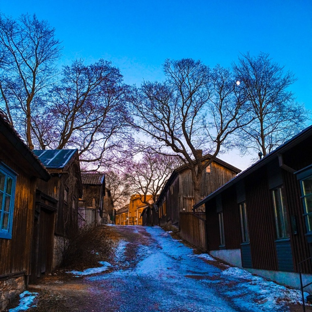 spring-in-finland -8-signs-its-here