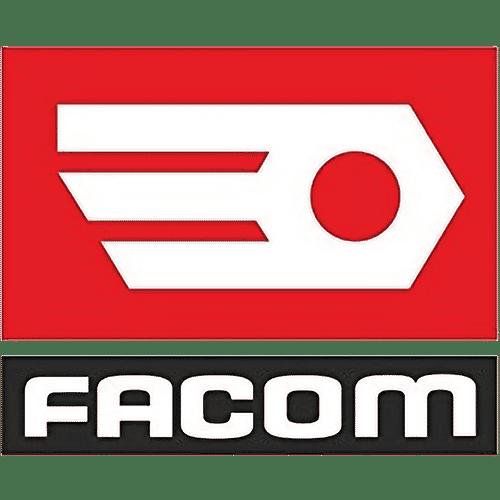 Logo-Facom