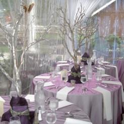 20070921165157Laurel-Creek-Wedding-Tent