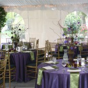 20070922130117Laurel-Creek-wedding-tent-1