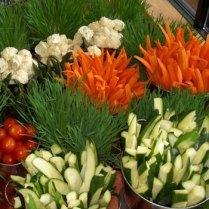 Fresh Veggies in Living Wheat Grass