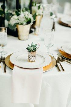 Succulent Guest Favor