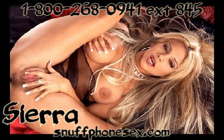 accomplice phone sex