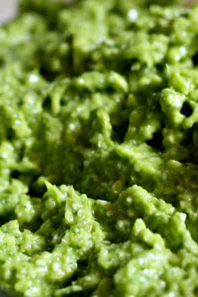 Garlic Scape Pesto with Basil – 10 Minute Recipe
