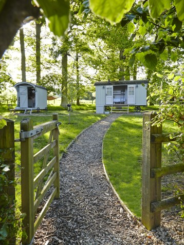 Luxury Glamping Experience