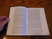 Passio MEV Bible 022