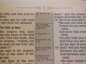 nasb picture bible 030