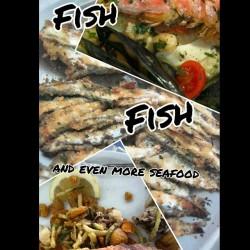 Fisch, Nahrung, Essen, Riccione