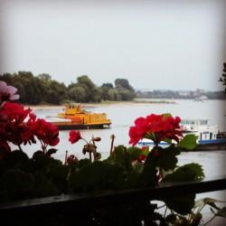 Rhein bei Rodenkirchen