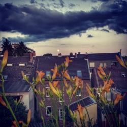 neues-aus-balkonien-www-gaidaphotos-com-gaidaphotos-2