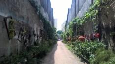 Georgetown - Nebenstraße
